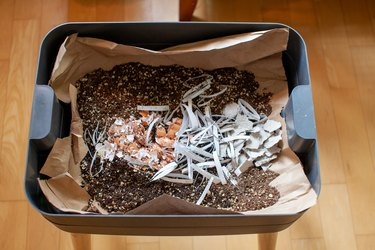 How to Vermicompost — A Beginner's Guide