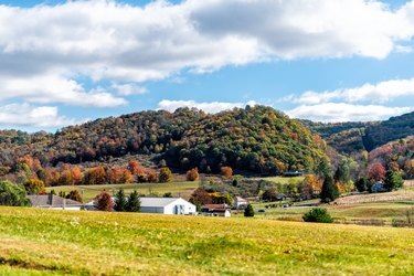 View of red maple trees and white farm houses in appalachian mountains in Monterey, Highland County, Virginia