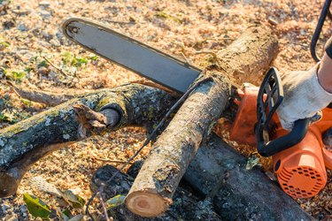 Man saws trees for firewood with an electric chain saw, close-up