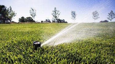 Sprinkler Head Watering Grass
