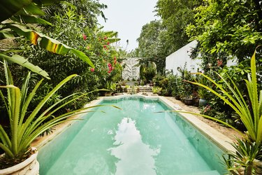 View of pool and backyard garden courtyard of home