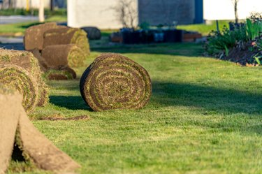 Rolls of fresh sod lawn grass ready for planting
