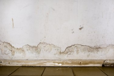 Dealing With Water Damage? Here Are All the DIY Cleanup Tips You Need to Know
