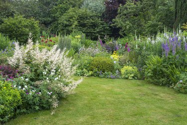 English country garden in late June
