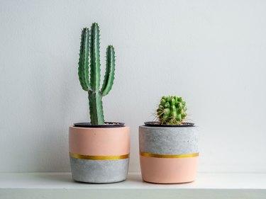 Modern geometric concrete planter. Beautiful concrete pot.