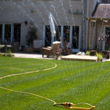 Spinkler on Lawn
