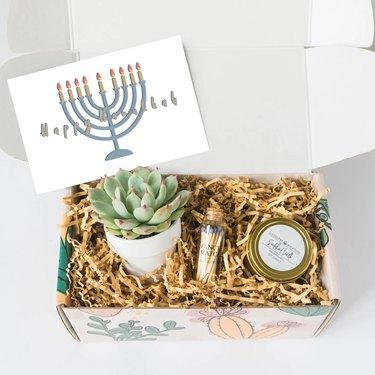 Hanukkah succulent box