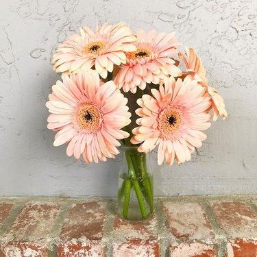gerber daisy trader joe's flower arrangement