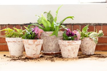 a group of DIY aged terra cotta pots