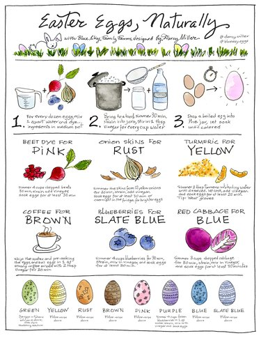 Blue Sky Family Farms and darcy miller egg dyeing instructions