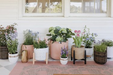Assortment of planters and cottage garden flowers on patio