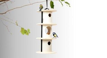 Andreu Carulla Bird and Breakfast