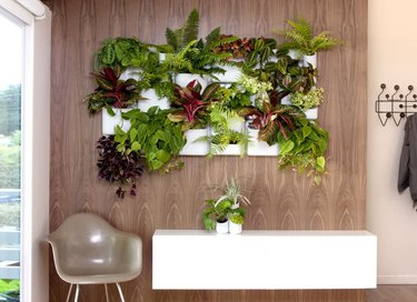 Urbio Happy Family Wall Planters