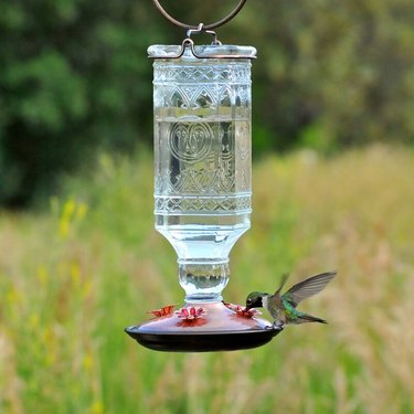 Hartsdale Fleur De Lis Living Hummingbird Feeder