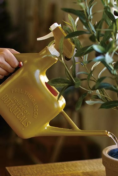 person using spray bottle watering can on plant