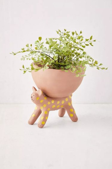 spotted cat planter with plant