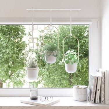 Umbra Triflora Hanging Planter