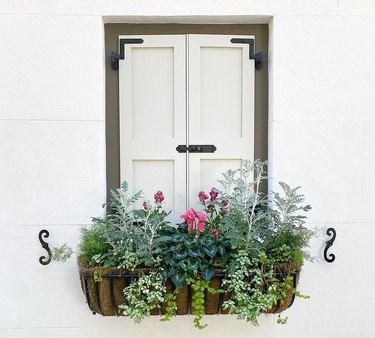 window planter featuring green, pink, and purple flowers