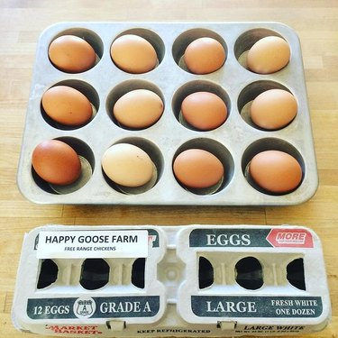 brown eggs in muffin tin with egg carton