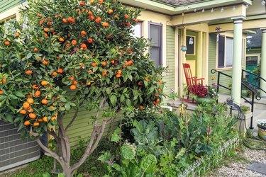 A Family-Friendly Home in Long Beach, California