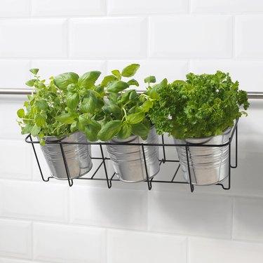 Svartpeppar Plant Pot Holder