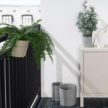Vitlök Plant Pot With Holder