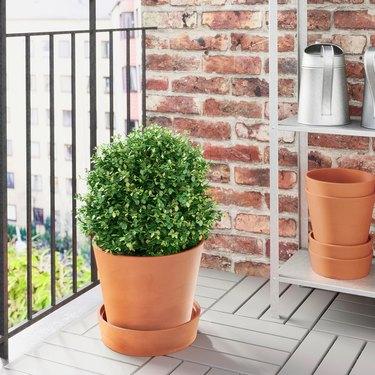 Ingefära Plant Pot With Saucer
