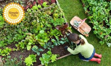 simple mills woman gardening outside