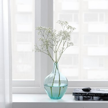 light turquoise vase with buds near white window