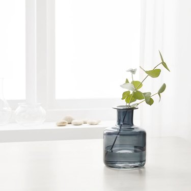 dark glass vase with green plant and white window in the background