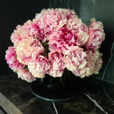 command performance peonies in vase