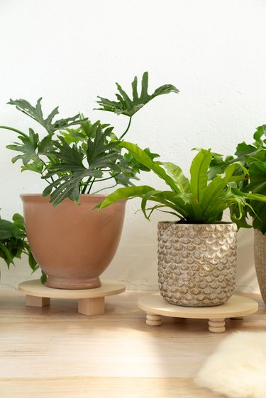 DIY wood plant risers with potted plants