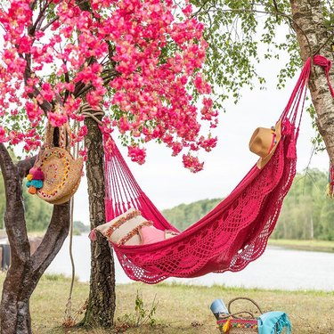 pink hammock and pink flowers