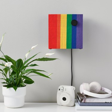 area with plant, camera, and headphones with rainbow bluetooth speaker on the wall