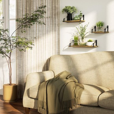 living room with hanging shelves with plants