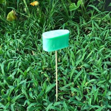 bar of irish spring soap in garden