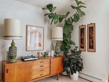 Fiddle leaf fig tree in living room next to wood credenza and art