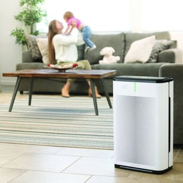 Brondell Pro Sanitizing Air Purifier with AG+ Technology,