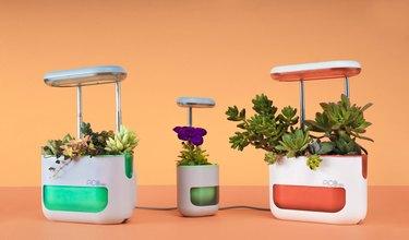 PicoMax garden system