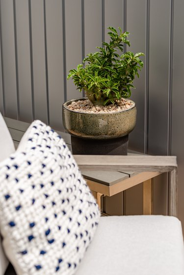 close-up of pillow on chair and plant sitting on bench