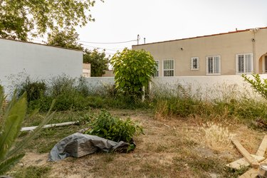abandoned backyard