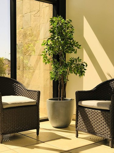 weatherproof concrete outdoor planter