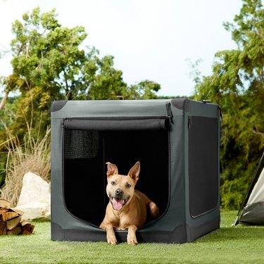 frisco indoor outdoor dog houses