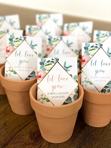 """Several small terracotta planters with seed packets inside that read """"Let Love Grow"""""""