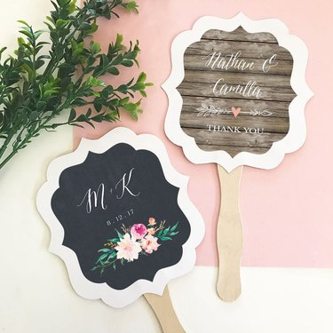 two fans on white and pink background with foliage nearby