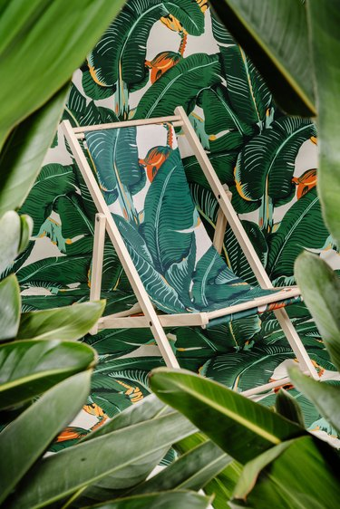 chair with palm leaf pattern with palm leaf pattern wall and leaves surrounding everything