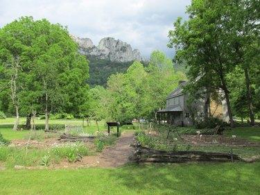 Renovated Barn in Seneca Rocks airbnb