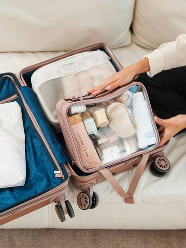 calpak clear travel case