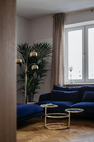 white living room with navy blue sofa and palm tree
