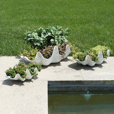 outdoor area with seashell planters with greenery in them